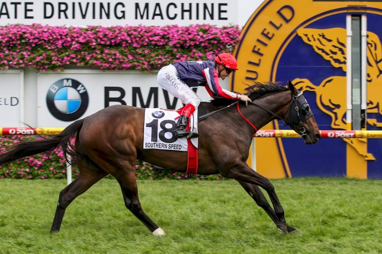 Southern Speed ridden by Craig Williams wins the BMW Caulfield Cup at Caulfield Racecourse on October 15, 2011 in Caulfield, Australia. (Racing Photos)