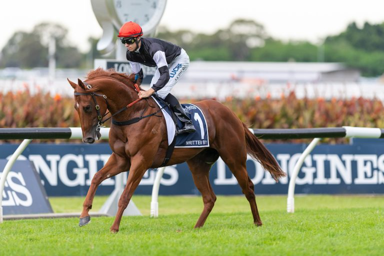 WRITTEN BY canters to the barrier before the G1 Longines Golden Slipper.  Photo by Bronwen Healy - The Image is Everything