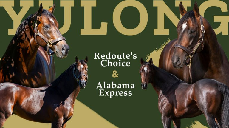 Alabama Express following in the footsteps of his father Redoute's Choice